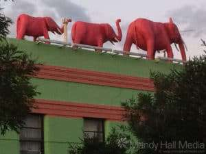 Pink elephants on top of the Windsor Castle Hotel in Melbourne